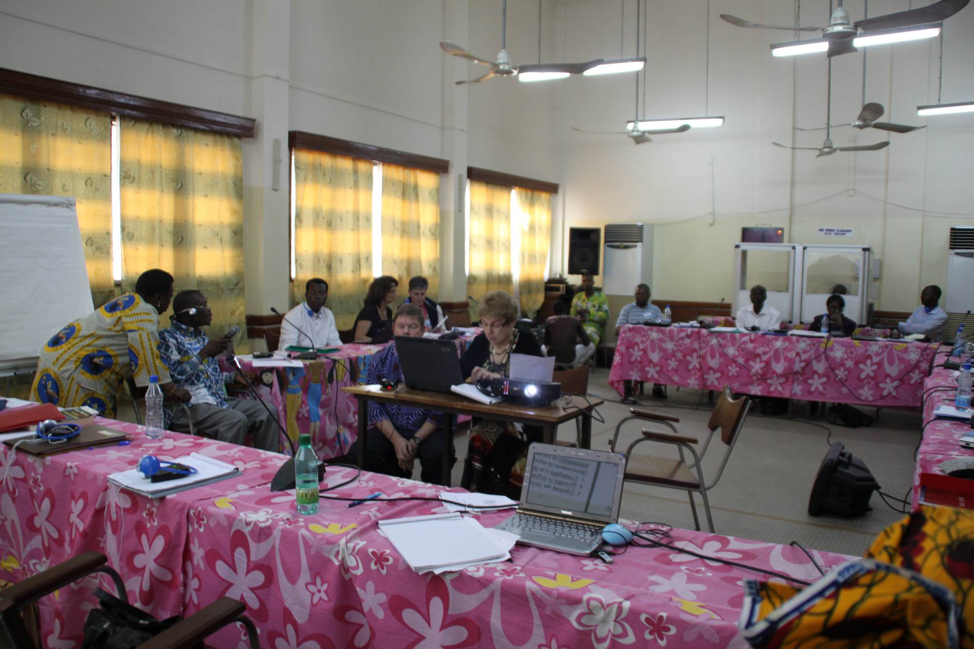 During the working session about Vision andmission of AFLF 3 2011